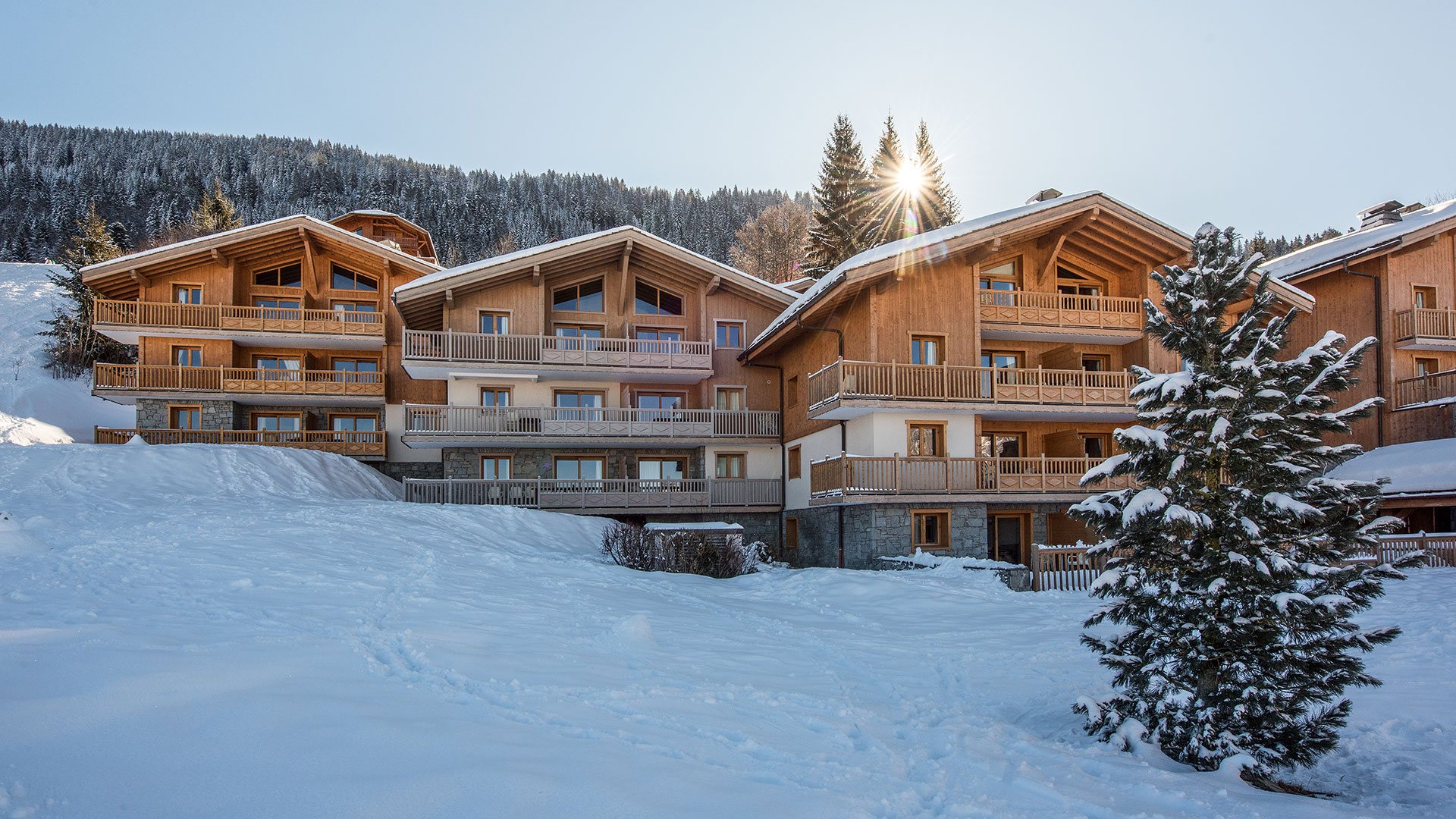 Les Chalets De Jouvence Ski Apartment In Les Carroz Cgh Residences